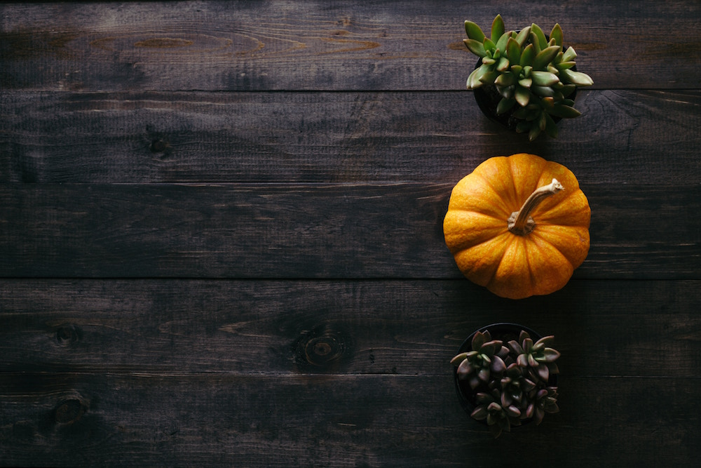 How to Prepare for Fall and Winter-My Actual Plans